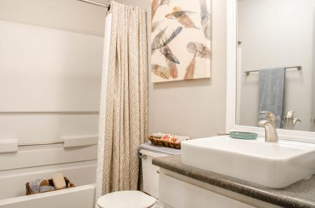 Elegant Bathroom | Luxury Apartments In Nashville TN | Bellevue West 1